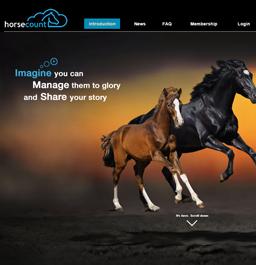 Horsecount